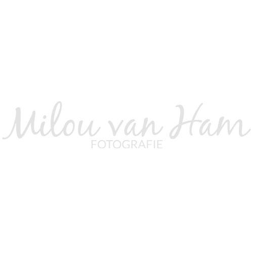 Milou van Ham Fotografie